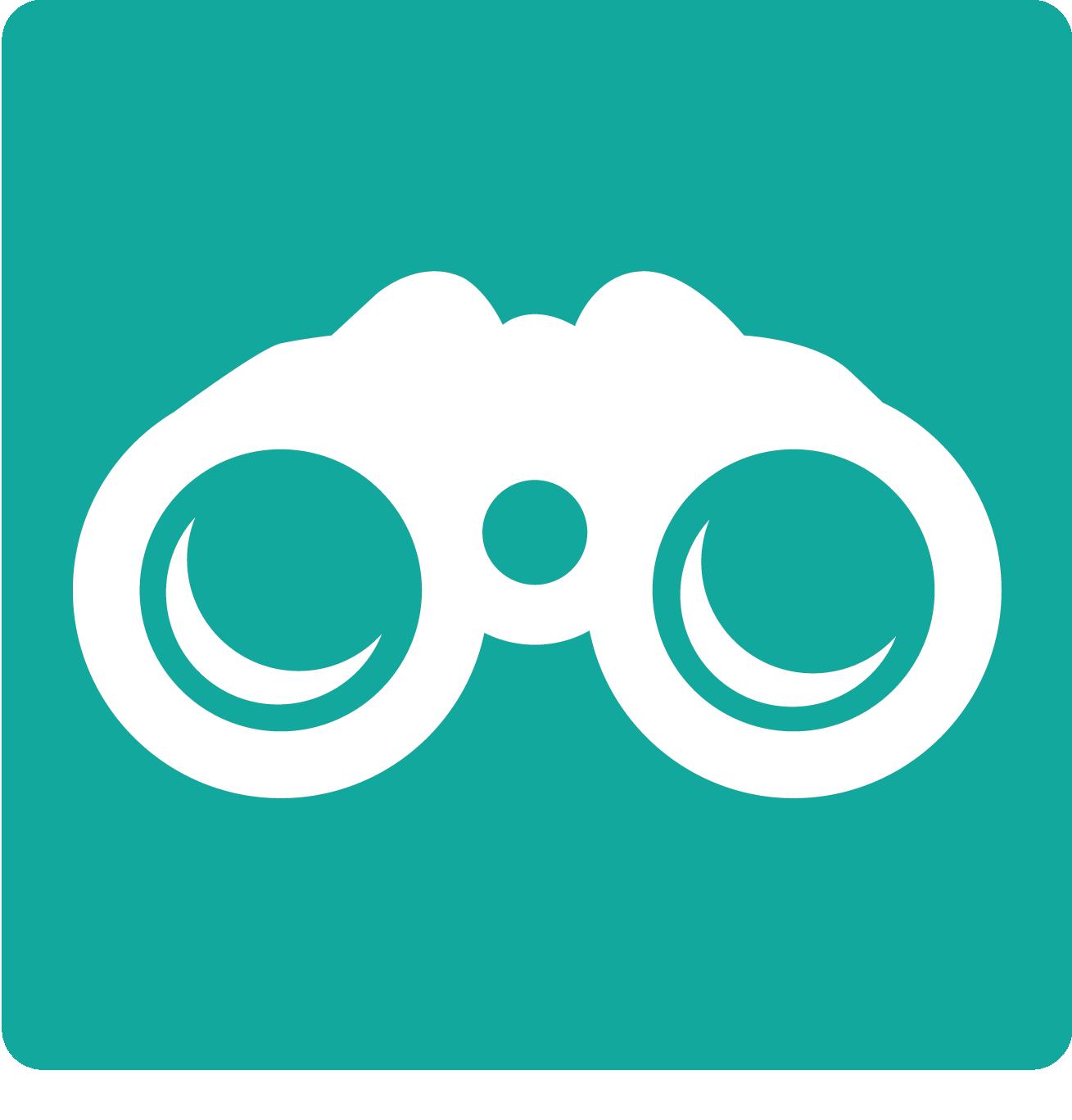Icon_Vision